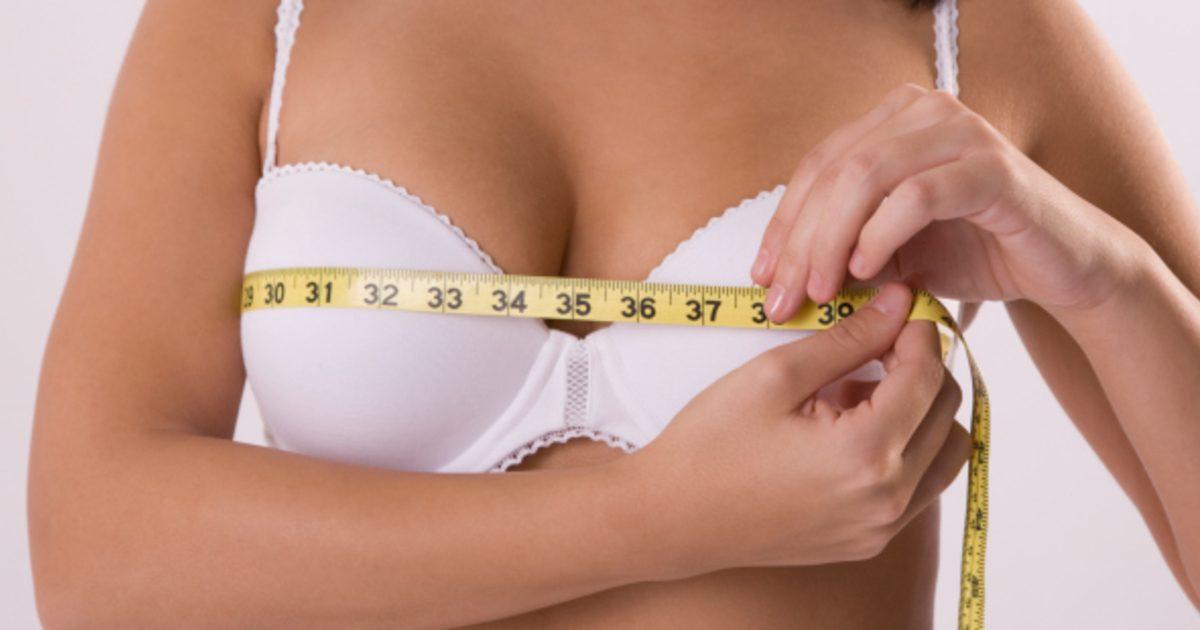 bra sizes