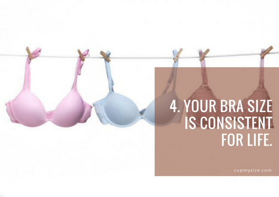 bra myths